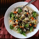 Chicken and Broccoli Soup