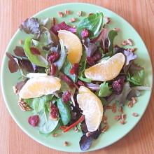 Field Salad w Citrus Vinaigrette
