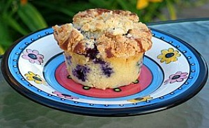 blueberry muffin sitting on a flowered plate