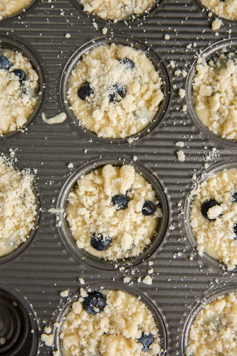 overhead shot of blueberry muffin batter filled muffin tin