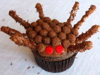 Chocolate-Hazelnut-Spider-Cupcakes11