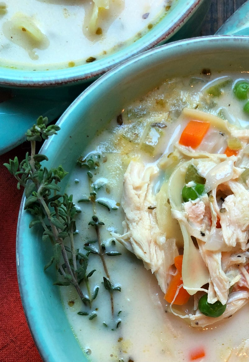 Bowl of Roasted Chicken Noodle Soup