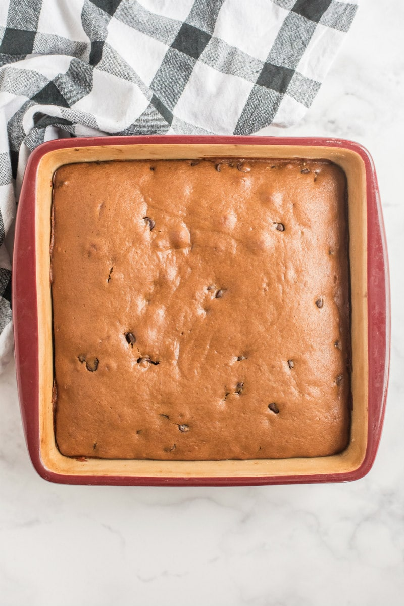 gingerbread with chocolate chips in a square pan