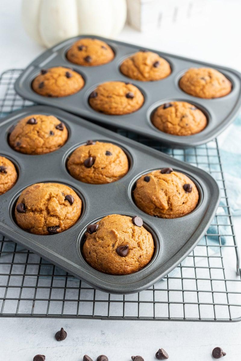 pumpkin chocolate chip muffins in a muffin pan