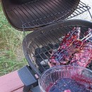 Blueberry Pork 2