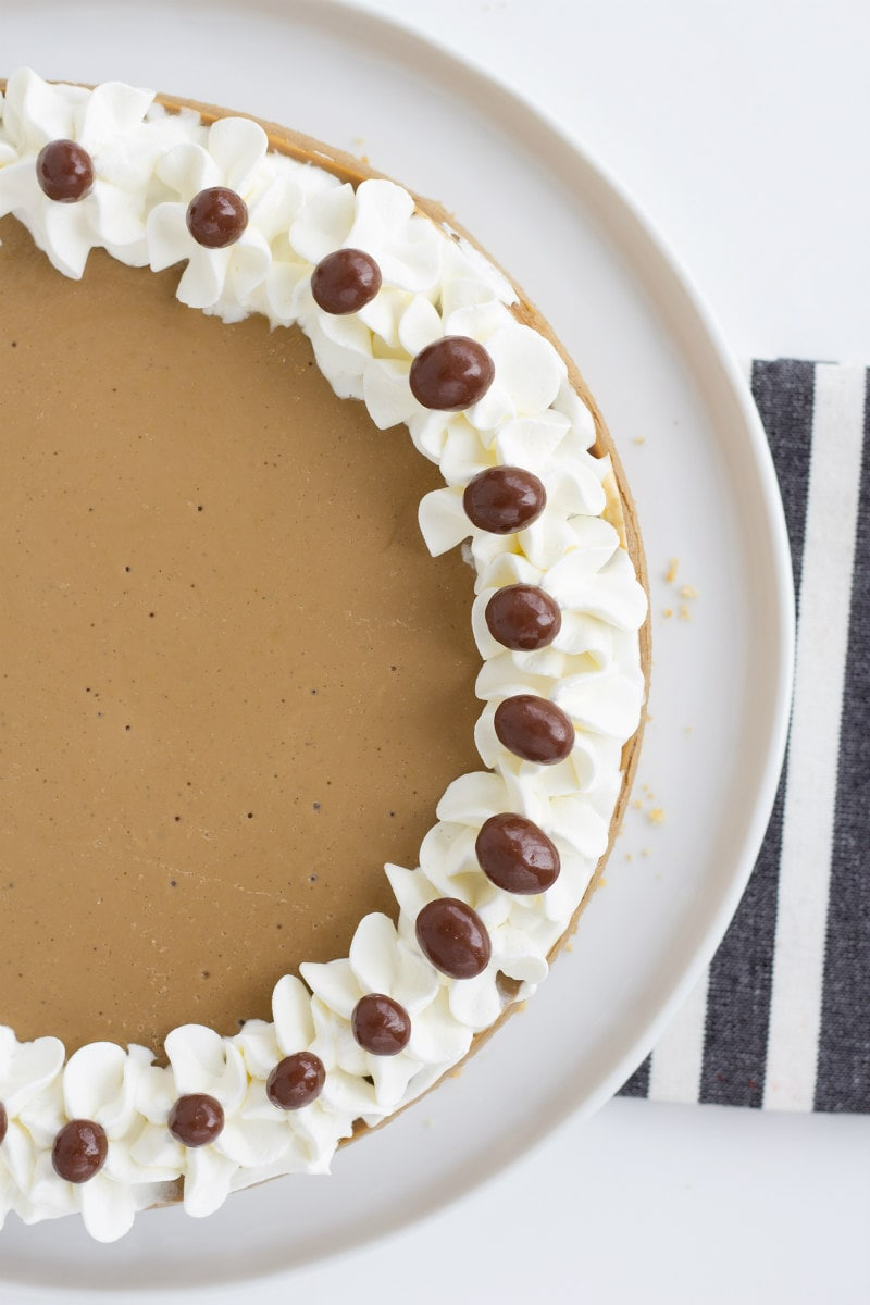 Cappuccino Cheesecake garnished with whipped cream and espresso beans