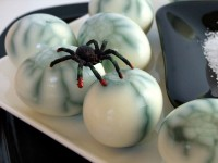 spiderweb eggs 5