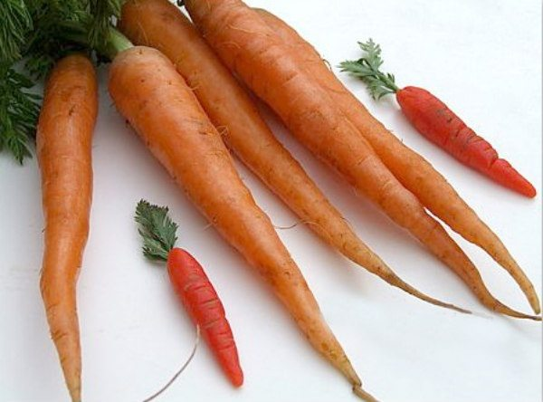 Marzipan Carrots vs. Real Carrots