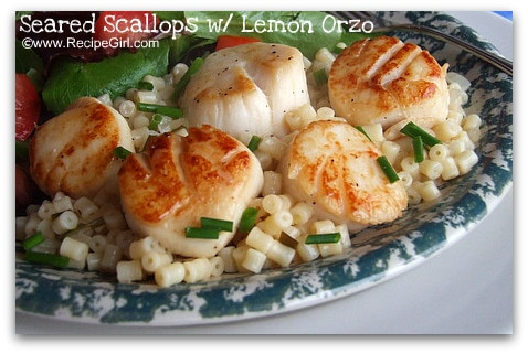 seared-scallops-with-lemon-orzo