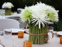 Asparagus Table Setting 1