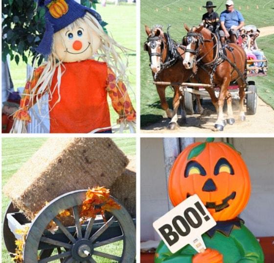 Santaluz Harvest Festival