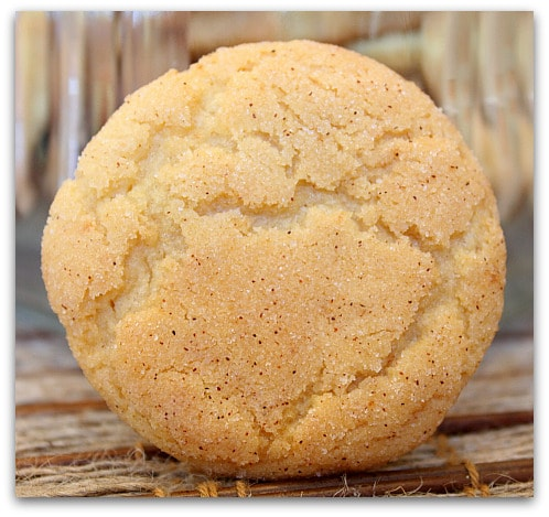 ... snickerdoodle cookie recipe snickerdoodle cookies 3 snickerdoodles