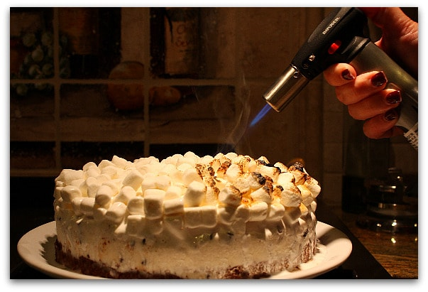 Campfire Ice Cream Cake