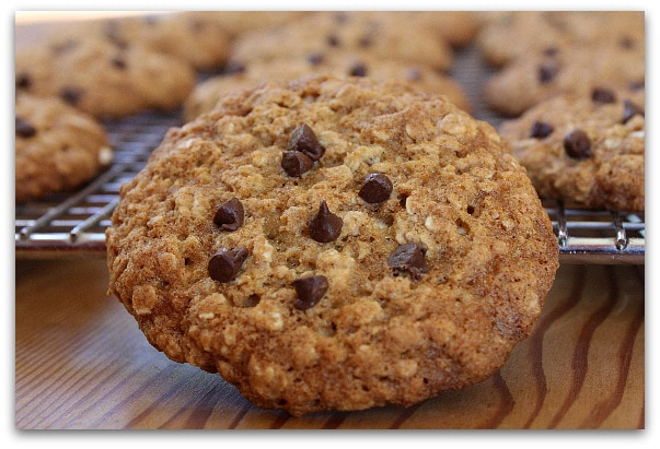 ... low fat chewy chocolate low fat chewy chocolate chip chewy
