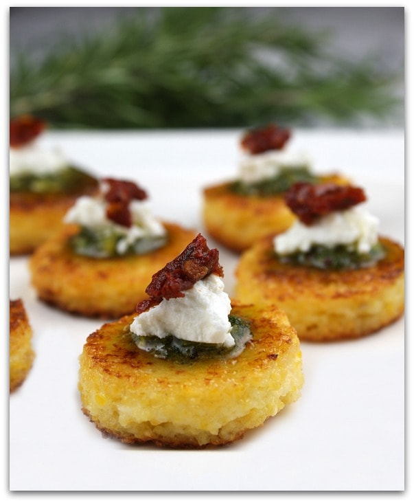 Gourmet Holiday Appetizer Recipe