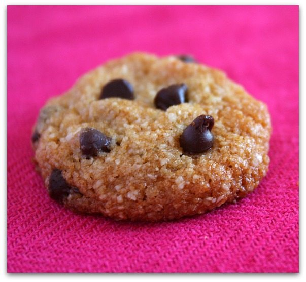 Weight Watchers-Chocolate-Chip-Cookies-4