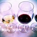 Kendall Jackson Wine Tasting 2
