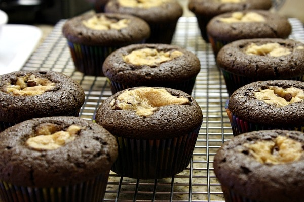 Chocolate Chip Cookie Dough Cupcakes out of the oven