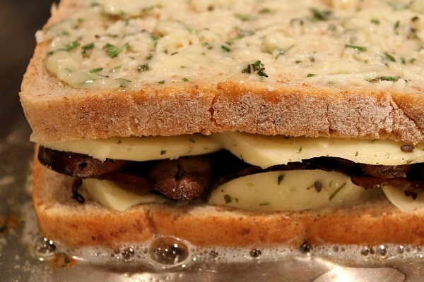 Mushroom Grilled Cheese with Balsamic Caramelized Onions