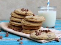 Snickerdoodle Pudding Cookies 1