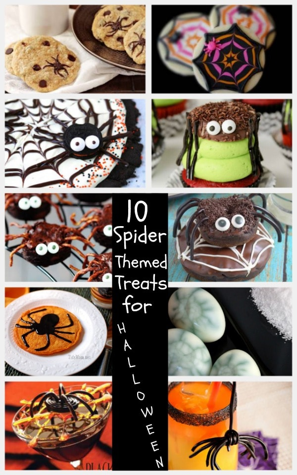 10 Spider Themed Treats for Halloween
