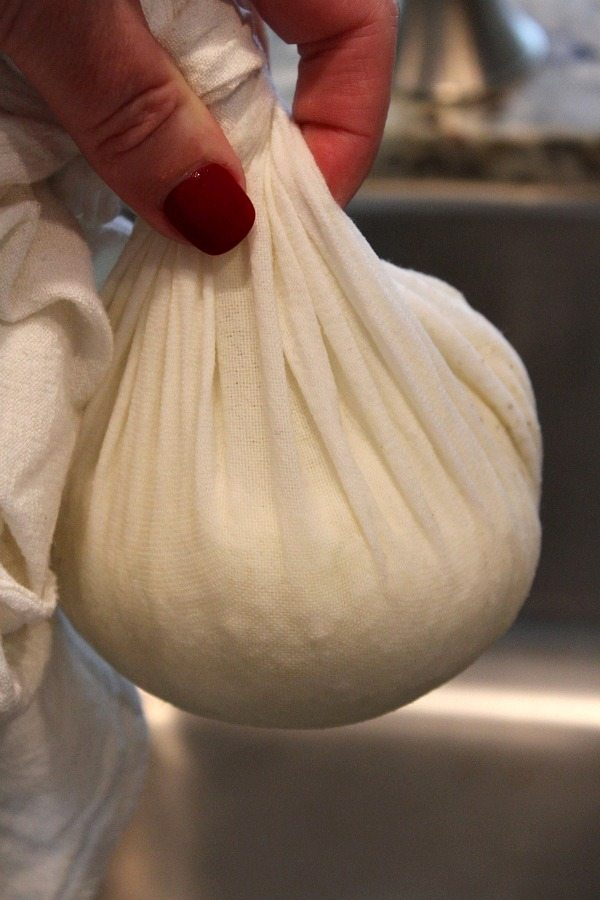 ingredients for cauliflower tortillas in a cheesecloth squeezing it dry