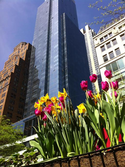 NYC in the Springtime