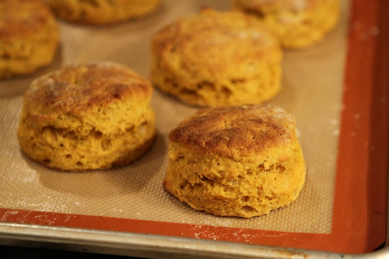 Pumpkin Biscuits fresh out of the oven