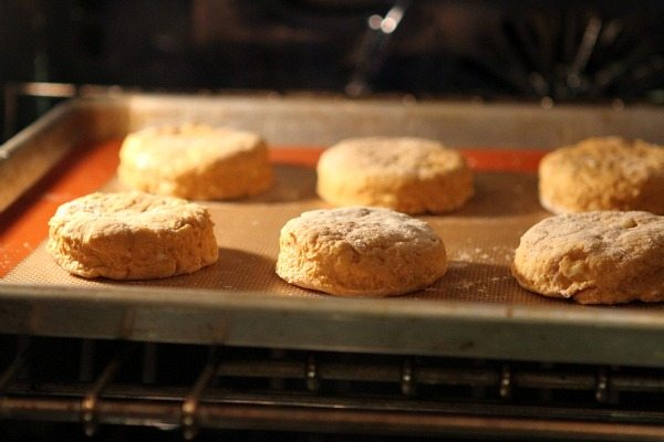 Baking Pumpkin Biscuits