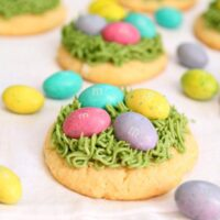 easter grass sugar cookies with chocolate eggs on top