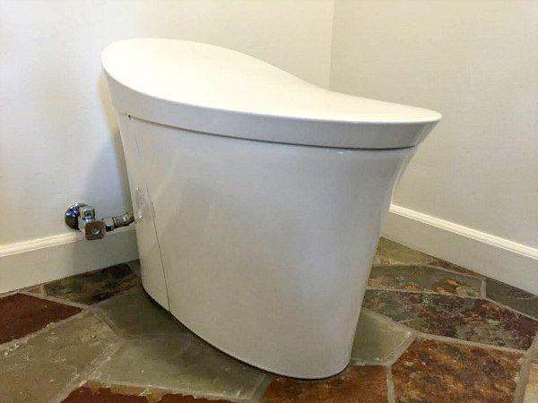 Excellent Super Flush Toilet Home Depot Pictures - Best image 3D ...