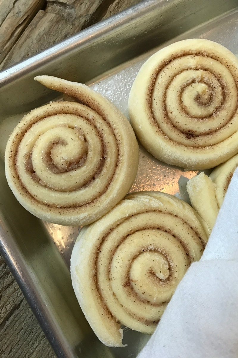 rising Old Fashioned Cinnamon Rolls