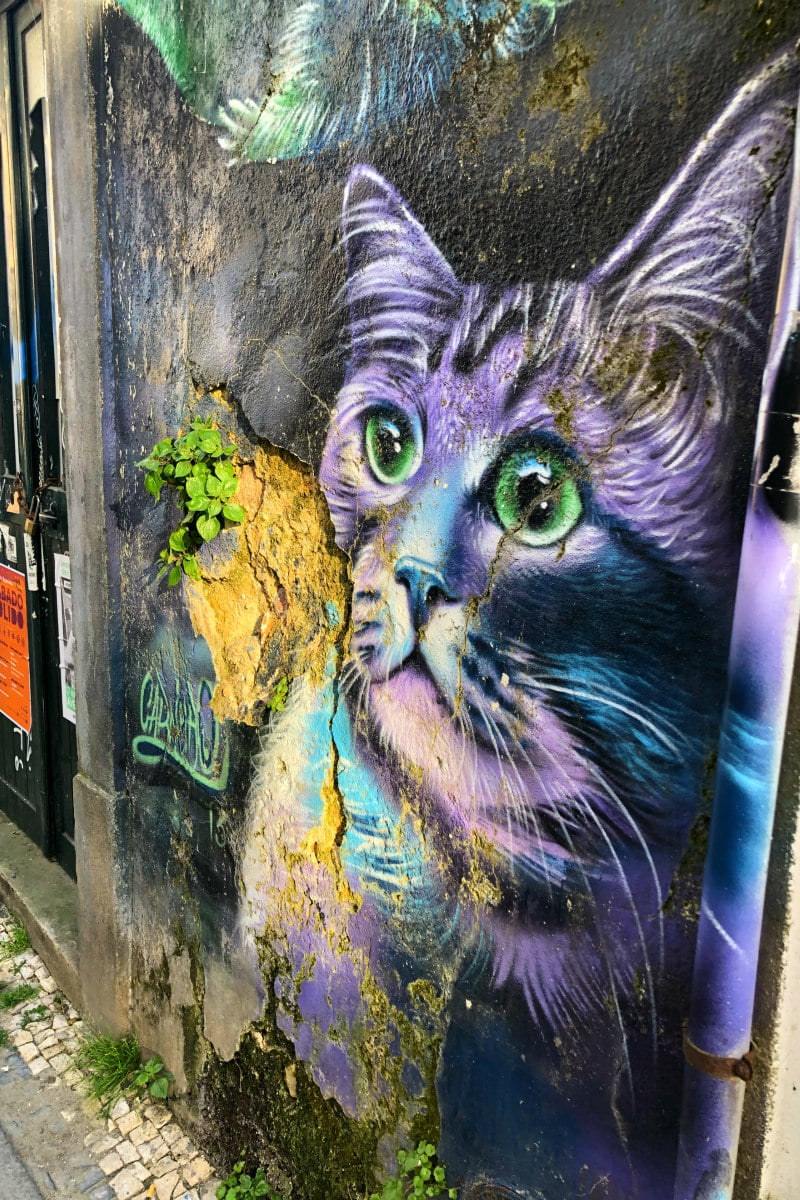 Road Trip to Portugal - graffiti art in Aveiro