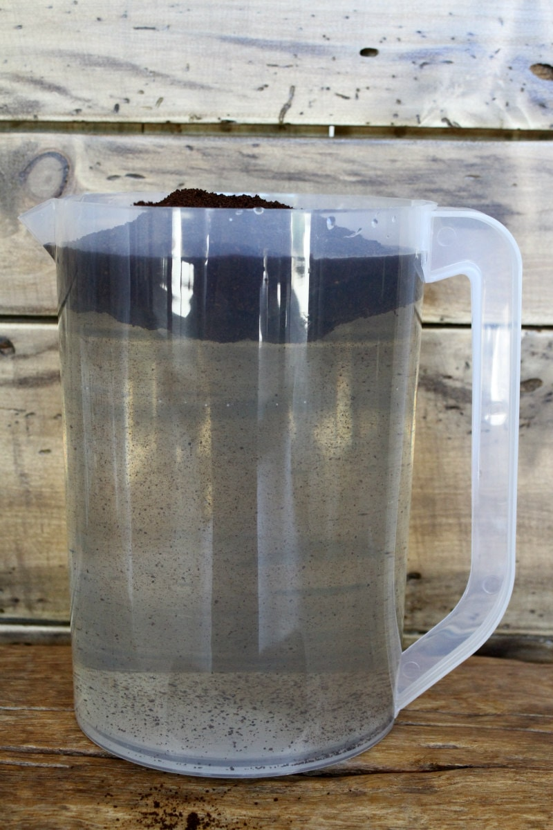 adding coffee grounds to a plastic pitcher of water