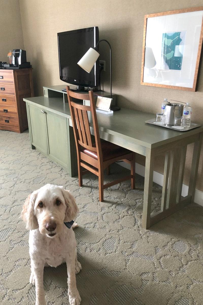 Room at Omni Grove Park Inn
