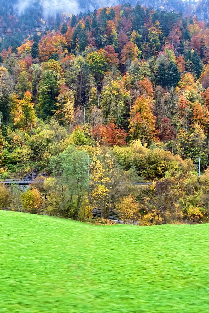 Fall scenery in the Swiss Alps with green grass field and changing colors of trees on hillside