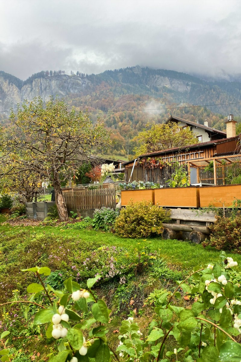 Scenery in Brienz, Switzerland: house with green landscape. Mountains in background.