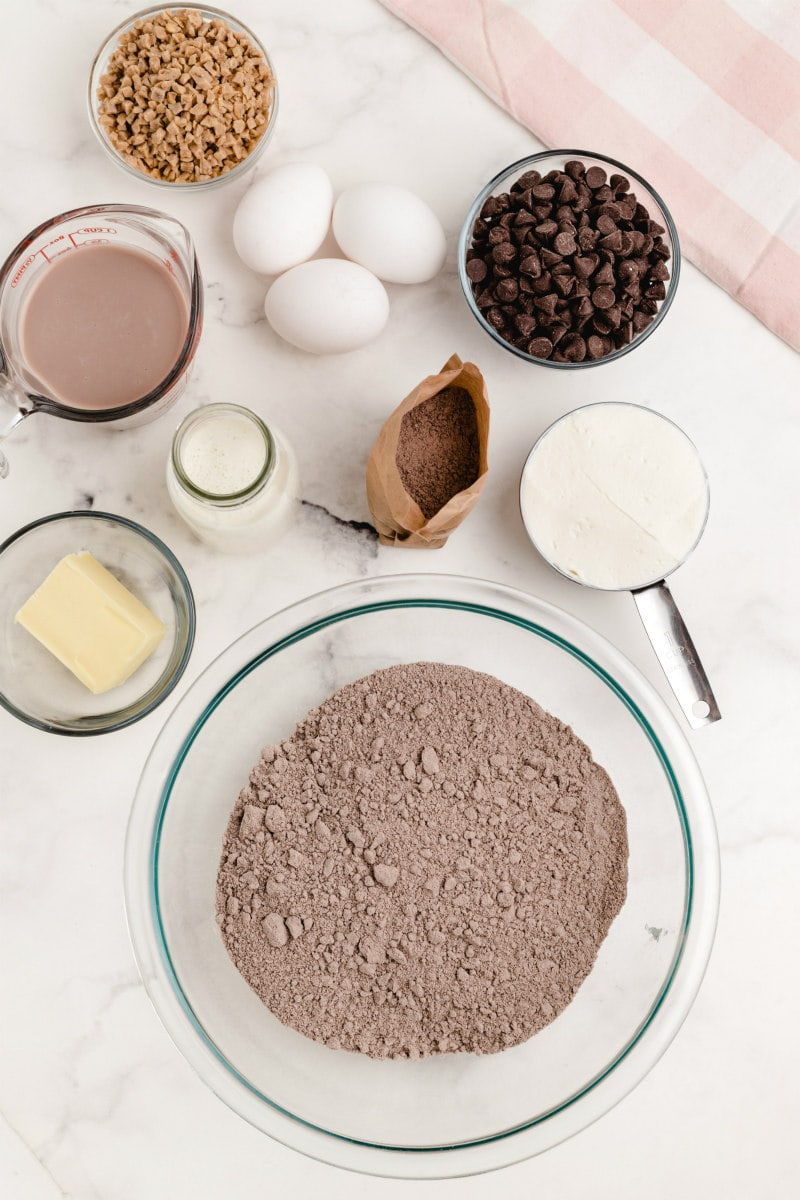 overhead shot of ingredients needed for chocolate wasted cake: ingredients displayed in little bowls: cake mix, butter, cream, chocolate milk, eggs, chocolate pudding, sour cream, chocolate chips